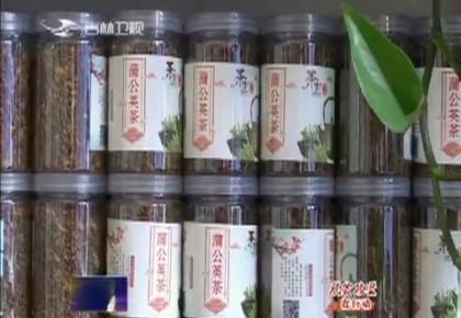 【脱贫攻坚在行动——第一书记代言】吕文学:我为东兴村蒲公英茶代言