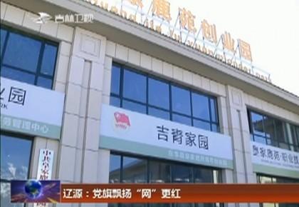 """辽源:党旗飘扬""""网""""更红"""