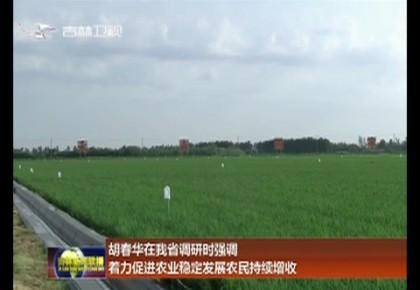 胡春华在我省调研时强调 着力促进农业稳定发展农民持续增收