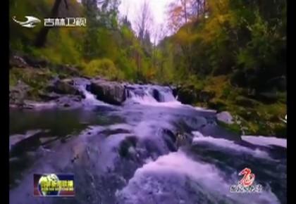 【庆祝新中国成立70周年微视频展播】《灵秀长白》