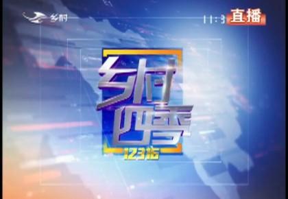 乡村四季12316|2019-11-05