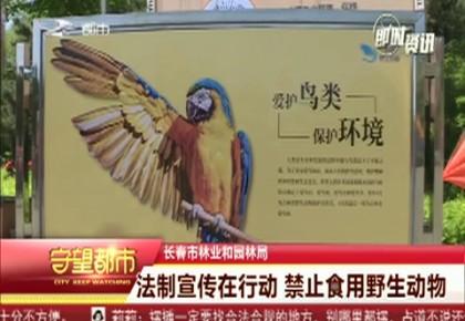 守望都市|长春市法制宣传在行动 禁止食用野生动物