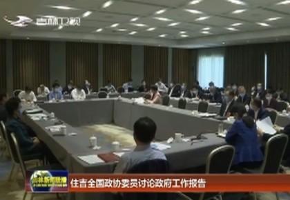 住吉全国政协委员讨论政府工作报告