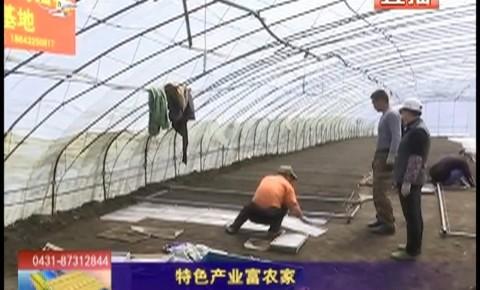 乡村四季12316_特色产业富农家