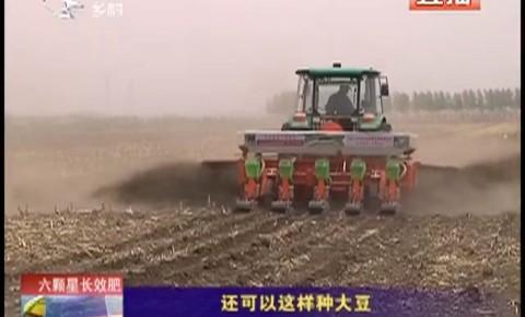 乡村四季12316_还可以这样种大豆