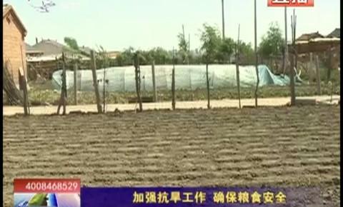 乡村四季12316_加强抗旱工作 确保粮食安全