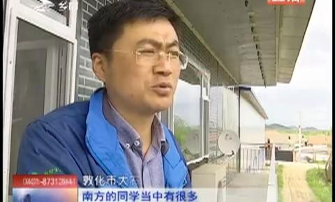 """乡村四季12316_我是玉米收""""一哥""""(二)"""