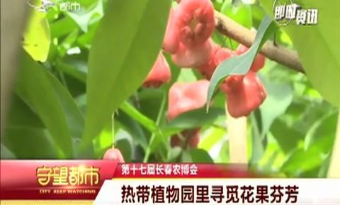 第十七届长春农博会|热带植物园里寻觅花果芬芳