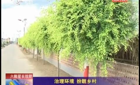 乡村四季12316|前郭县:治理环境 扮靓乡村