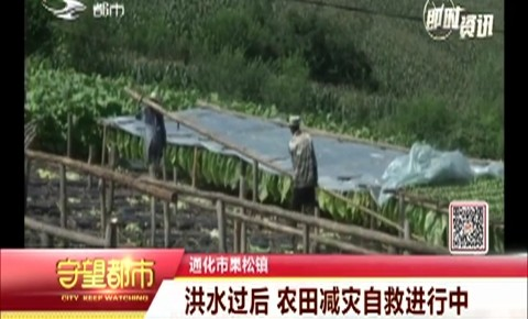 通化市果松镇|洪水过后 农田减灾自救进行中