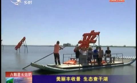 乡村四季12316 美丽丰收景 生态查干湖
