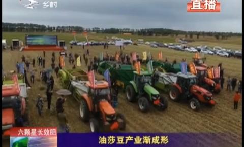 乡村四季12316|油莎豆产业渐成形