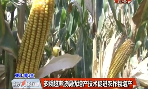 多频超声波调优增产技术促进农作物增产