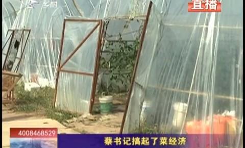 乡村四季12316|蔡书记搞起了菜经济