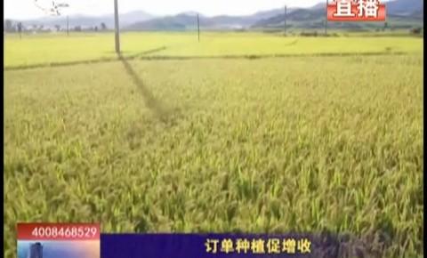 乡村四季12316|订单种植促增收