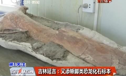 吉林延吉:又添蜥脚类恐龙化石标本