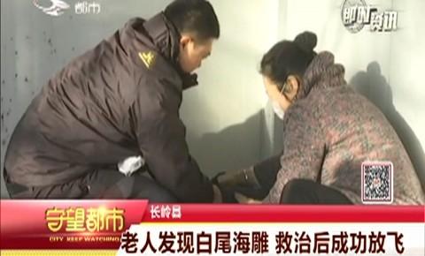 守望都市|长岭县:老人发现白尾海雕 救治后成功放飞