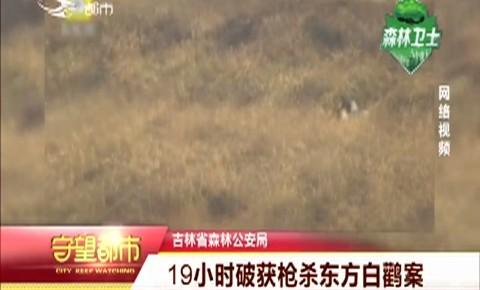 守望都市|吉林省森林公安局:19小时破获枪杀东方白鹳案