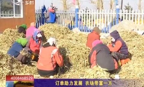 乡村四季12316|订单助力发展 农场带富一方