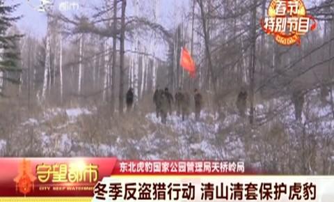 守望万博官网manbetx客户端|冬季反盗猎行动 清山清套保护虎豹
