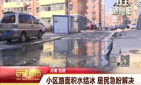 守望都市|小区路面积水结冰 居民急盼解决