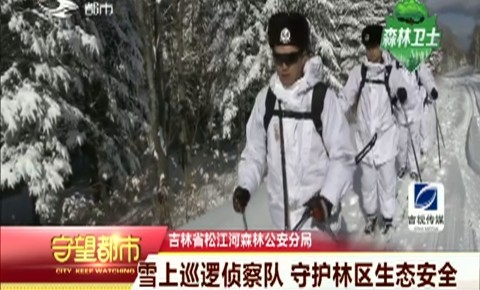 守望都市|雪上巡逻侦察队 守护林区生态安全
