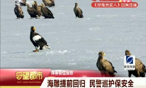 守望都市|海雕提前回归 珲春民警巡护保安全