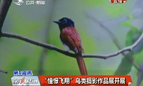 """第1报道丨""""憧憬飞翔"""" 鸟类摄影作品展开展"""