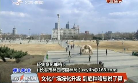 第1报道|文化广场绿化升级 到底种啥您说了算