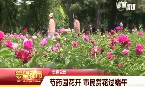 守望万博官网manbetx客户端|长春公园芍药园花开 市民赏花过端午