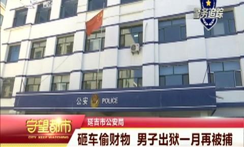 守望都市|延吉市公安局:砸车偷财物 男子出狱一月再被捕