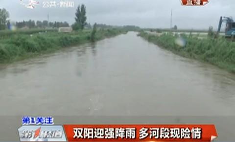 第1报道|双阳迎强降雨 多河段现险情