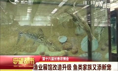 守望都市|农博会:渔业展馆改造升级 鱼类家族又添新宠