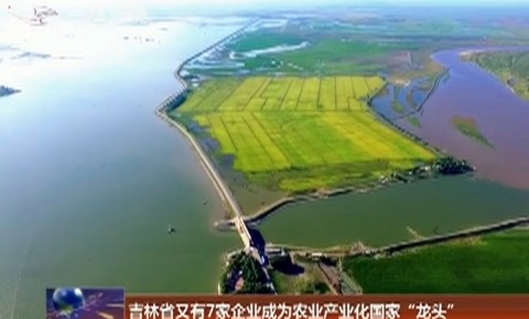 """吉林省又有7家企业成为农业产业化国家""""龙头"""""""