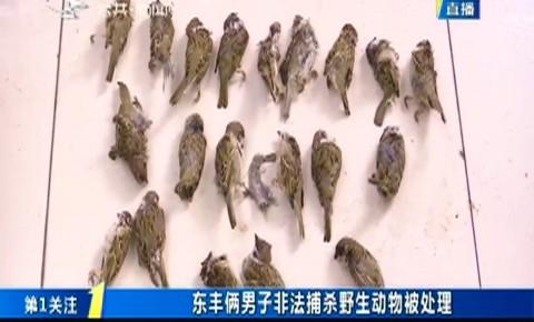 第1报道|东丰俩男子非法捕杀野生动物被处理