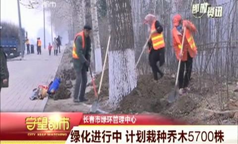 守望都市|绿化进行中 计划栽种乔木5700株