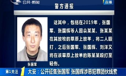 第1报道|大安:公开征集张国军 张国辉涉恶犯罪团伙线索