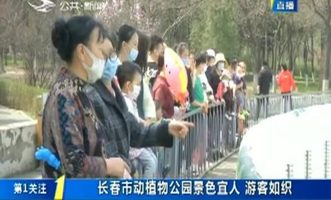第1报道|长春市动植物公园景色宜人 游客如织