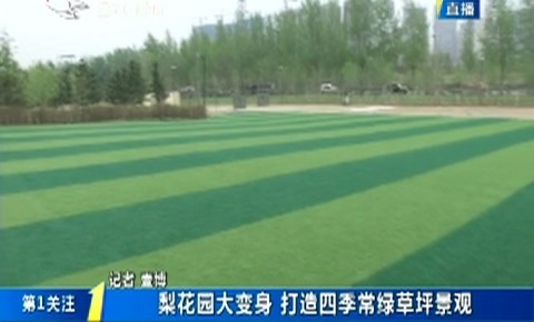 第1报道|梨花园大变身 打造四季常绿草坪景观