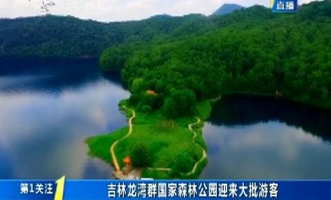 第1报道|吉林龙湾群国家森林公园迎来大批游客