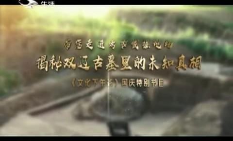 文化下午茶|双辽古墓发掘全纪录_2020-10-04