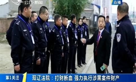 第1报道|双辽法院:打财断血 强力执行涉黑案件财产