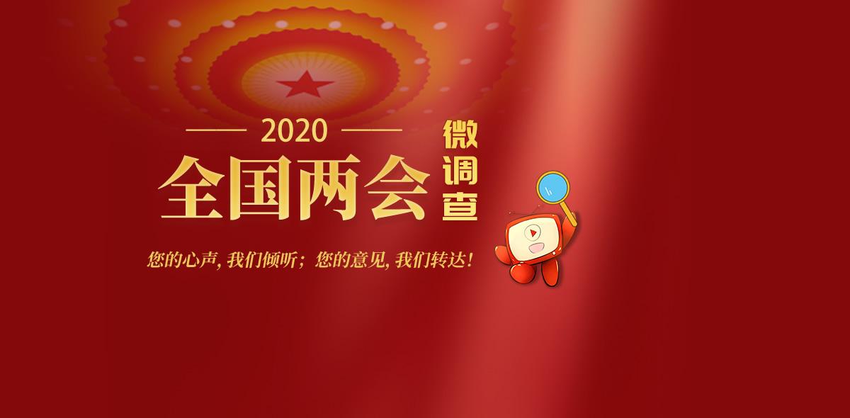 2020全国两会微调查