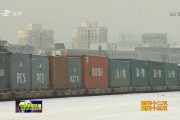"""""""长满欧""""国际货运开行百日 运输货值逾3500万欧元"""