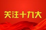 十九大回声|国际组织点赞绿色中国 生态发展绘就美丽新画卷