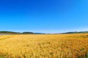 """【县域·在改革开放中成长】 吉林县域百变样本:柳河""""不一样的振兴路"""""""