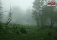 微视频丨吉林龙湾群国家森林公园