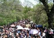 國慶假期吉林省共接待游客1584.87萬人次,旅游總收入111.39億元