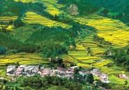 十七部门明确促进乡村旅游可持续发展五项措施