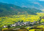 兩部委聯合發文 建立重點村名錄大力發展鄉村旅游